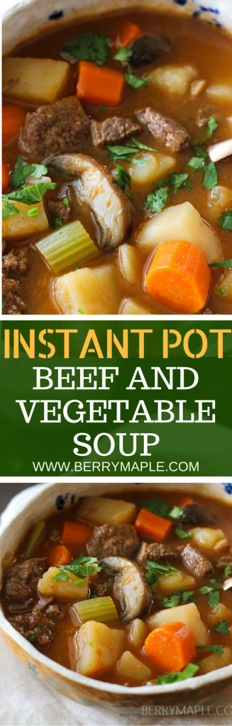 old fashioned beef and vegetable soup in instant pot # instantpot #soup #beef