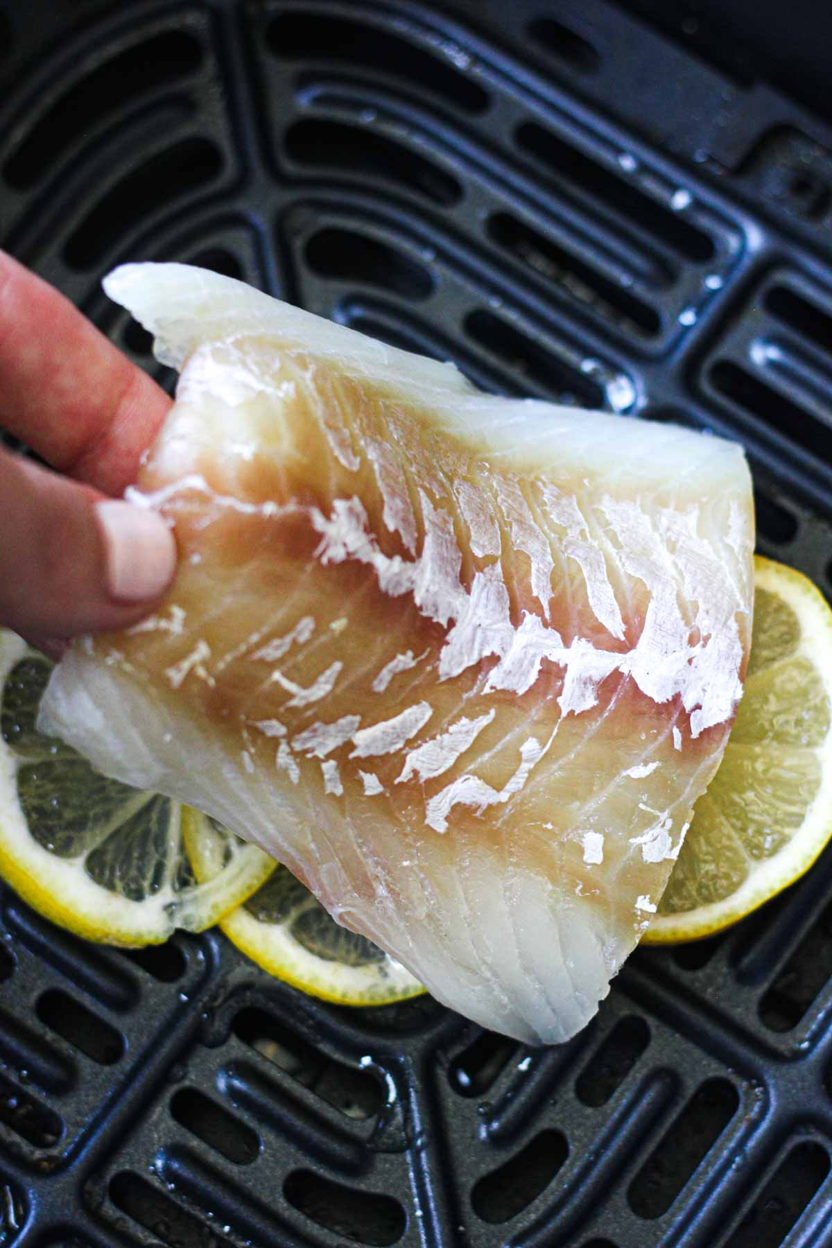 a piece of raw cod fillet in the hand