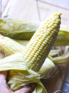 cooked corn in the hand